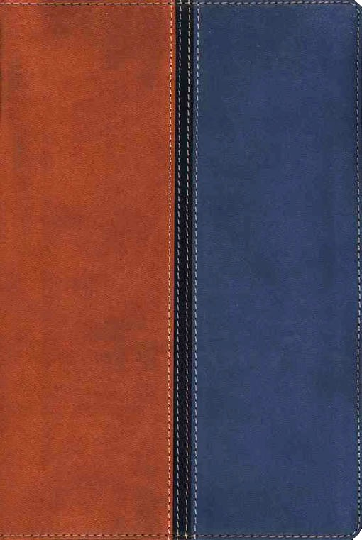 Matrimonio Biblia Paralela : Rvr 1960 nvi biblia paralela dos tonos italiano u2013 la puerta de la fe